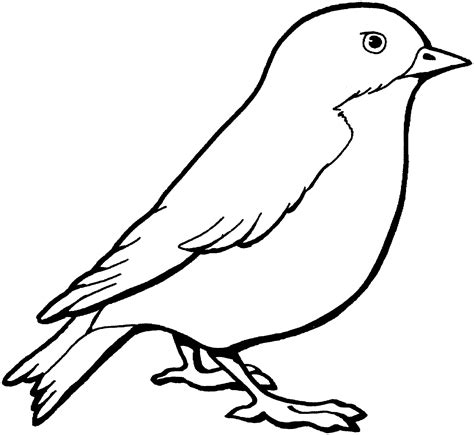 bird coloring sheet classroom bird coloring pages