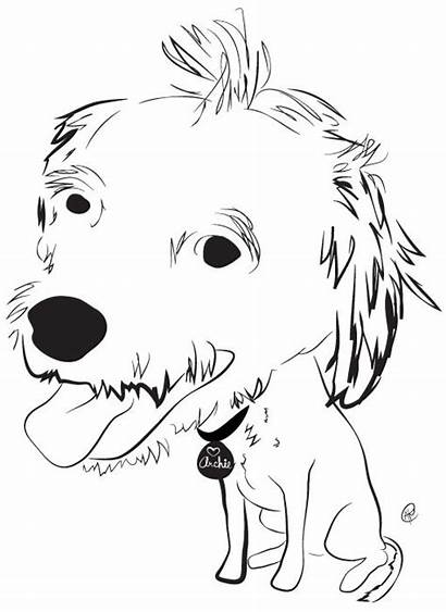 Animal Related Non Profit Dog