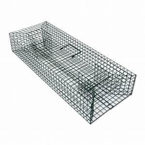 Piege à Rat Efficace : ducatillon nasse rats musqu s pi ges et r pulsifs ~ Dailycaller-alerts.com Idées de Décoration