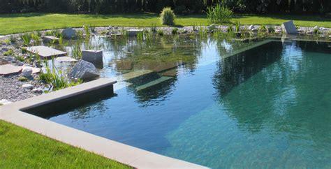 schwimmteich bilder pool  nature