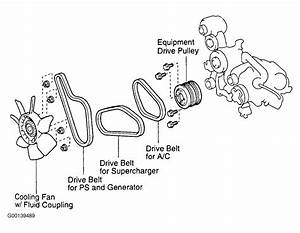 1996 Toyota Corolla Serpentine Belt Routing And Timing