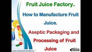 Fruit Juice Factory  How To Manufacture Fruit Juice