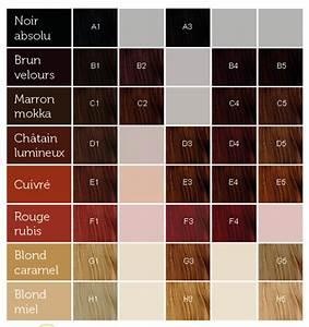 Nuancier Couleur Cheveux Coloration Cheveux Nuancier Koleston