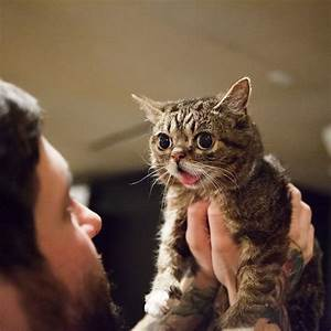 17 Best images about :>) love LIL Bub :>) on Pinterest ...