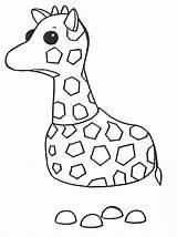 Adopt Giraffe Coloring Printable sketch template