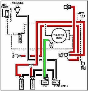 Vacuum Lines 4 9l - Ford F150 Forum