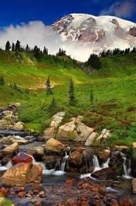 Mt. Rainier National Park Washington