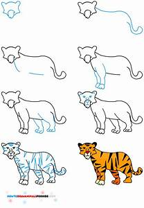 17+ best ideas about How To Draw Tiger on Pinterest ...