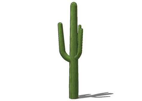 Blocchi Cad Arredo Blocchi Cad E Librerie Arredo Giardini Pianta Cactus