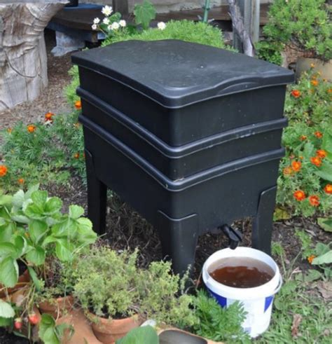 Backyard Worm Farm by Composting And Worm Farming City Of Fremantle