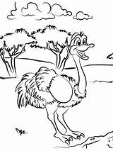 Coloring Ostrich Printable Gaddynippercrayons sketch template
