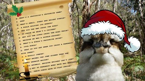 australian christmas pictures the land down under