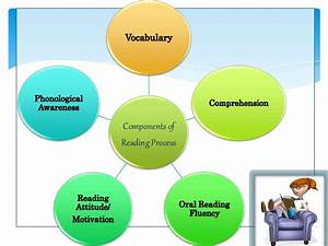 Components Of Reading Process