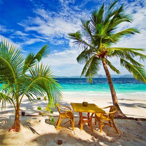 tropical vacation fragrance oil decoredo
