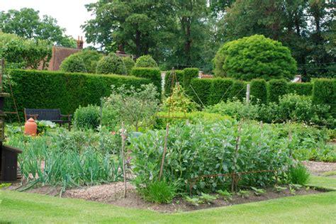vegetable gardening blogs hydrangea arborescens annabelle cox garden designs