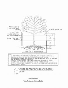 Tree Protection Diagram