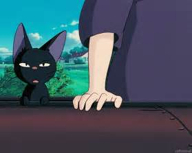 s delivery service cat and jiji gifs
