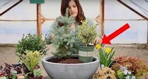 hier eine ausgeklugelte technik um pflanzen sehr sparsam With französischer balkon mit was tun gegen mäuse im garten