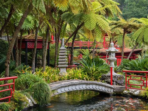24+ Tropical Garden Designs, Decorating Ideas | Design ...