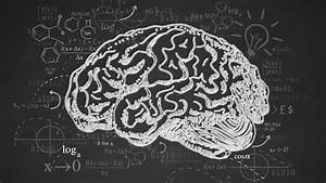 Video of the Week: A History of Cognitive Science ...