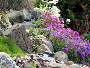 Blumen Für Steingarten : schroffe steine und bunte blumen radio wien ~ Sanjose-hotels-ca.com Haus und Dekorationen