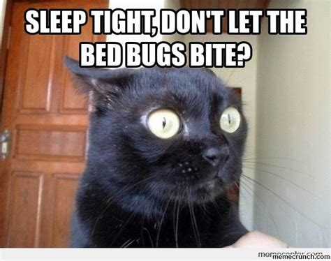 Bed Bug Meme - sleep tight don t let the bed bugs bite