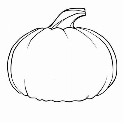 Pumpkin Printable Coloring Pattern Template Templates Patterns