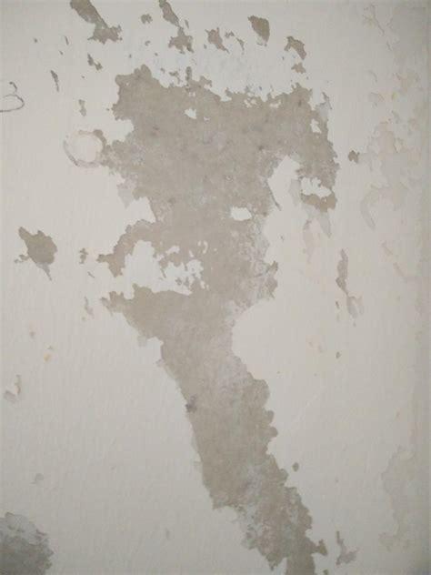 renover un mur en platre tres abimé comment r 233 nover un mur en placo avant de peindre