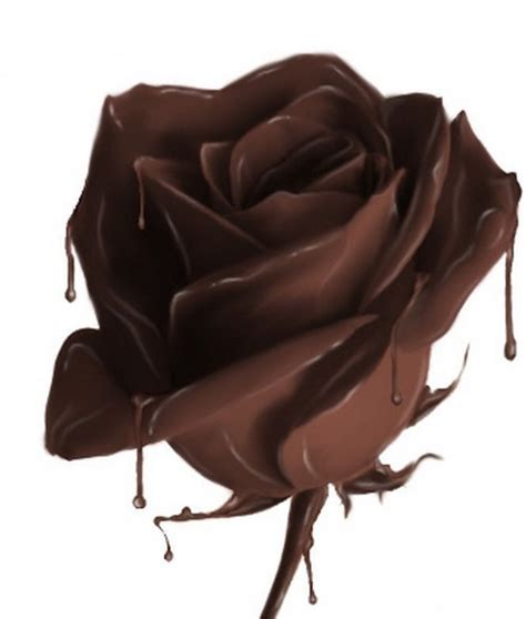 chocolate roses chocolate images chocolate rose wallpaper and background photos 19468818