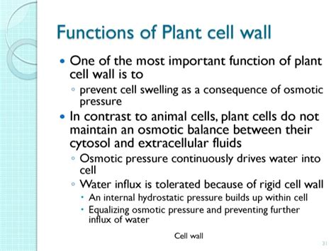 cells cell biology leacture 2