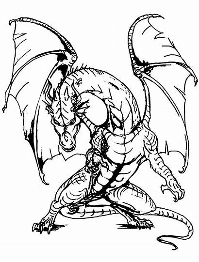 Dragon Legends Myths Giant Coloring Pages Adults