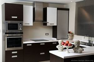 black and white kitchen designs ideas and photos With kitchen design in black and white