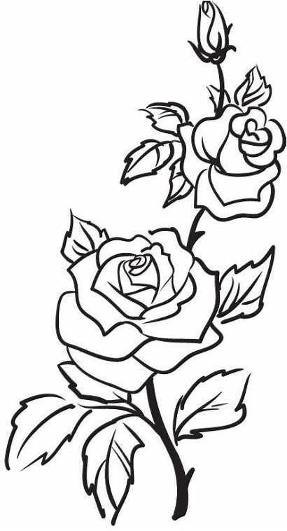 Outline Drawing Trendy Rose Tattoo Flowers Flower
