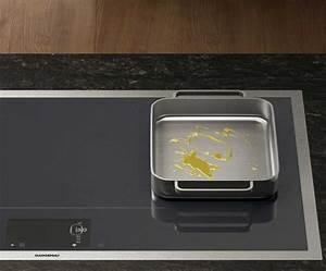 Plaque De Cuisson Gaz Induction : plaque de cuisson gaz induction ou vitroc ramique que choisir idkrea ~ Melissatoandfro.com Idées de Décoration