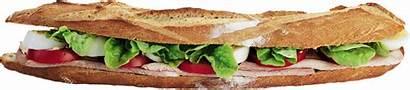 Sandwich Baguette Sandwhich Burger Pngimg Transparent Cheeseburger