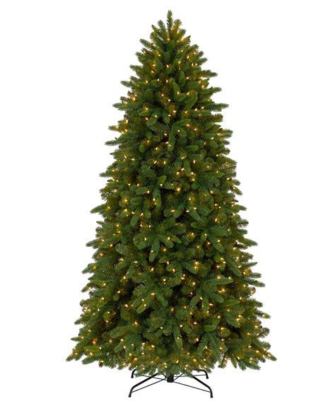 battery powered led light fraser fir tree tree classics