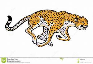 Gepard clipart - Clipground