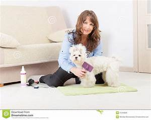 groomers at home With dog grooming at home