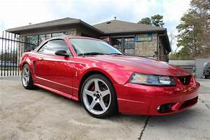Red 2001 Ford Mustang Cobra | C2G MOTORSPORTS