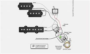 Bass Guitar Wiring Diagrams  U2013 Vivresaville Com