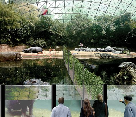 zoo toledo exhibit animals plans exhibits hippos weather concept minimize impact maps blade plan toledoblade