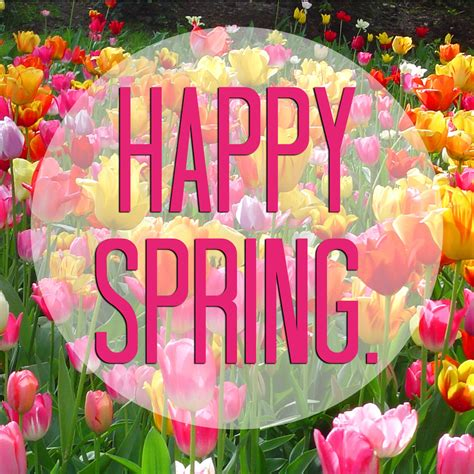 Happy Spring Day | Amazing Wallpapers