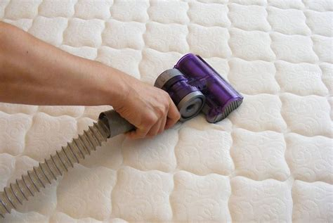 acaro materasso acari della polvere in casa come combatterli pulire casa