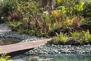 Plantes Vivaces Autour D Un Bassin : entretien et nettoyage d un bassin en 5 tapes facile d tente jardin ~ Melissatoandfro.com Idées de Décoration