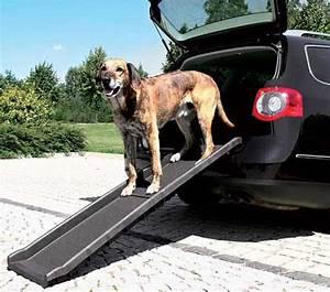 Voiture Pour Chien : la rampe pour chien trixie donne un acc s pliable la voiture ~ Medecine-chirurgie-esthetiques.com Avis de Voitures