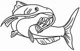 Catfish Coloring Pages Water Template Sketch Tocolor sketch template