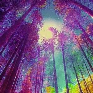 Trippy Psychedelic Forest