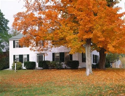 15374 inspirational groupon bed and breakfast colby hill inn henniker nh fall foliage
