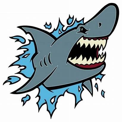 Shark Vector Mouth Danger Clipart Cartoon Illustration