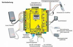 Net2 Plus Wiring Diagram
